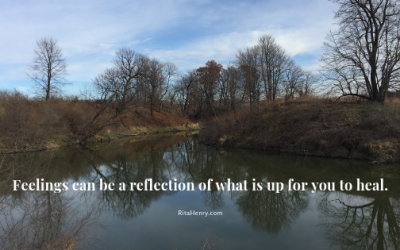 feelings lake trees fall