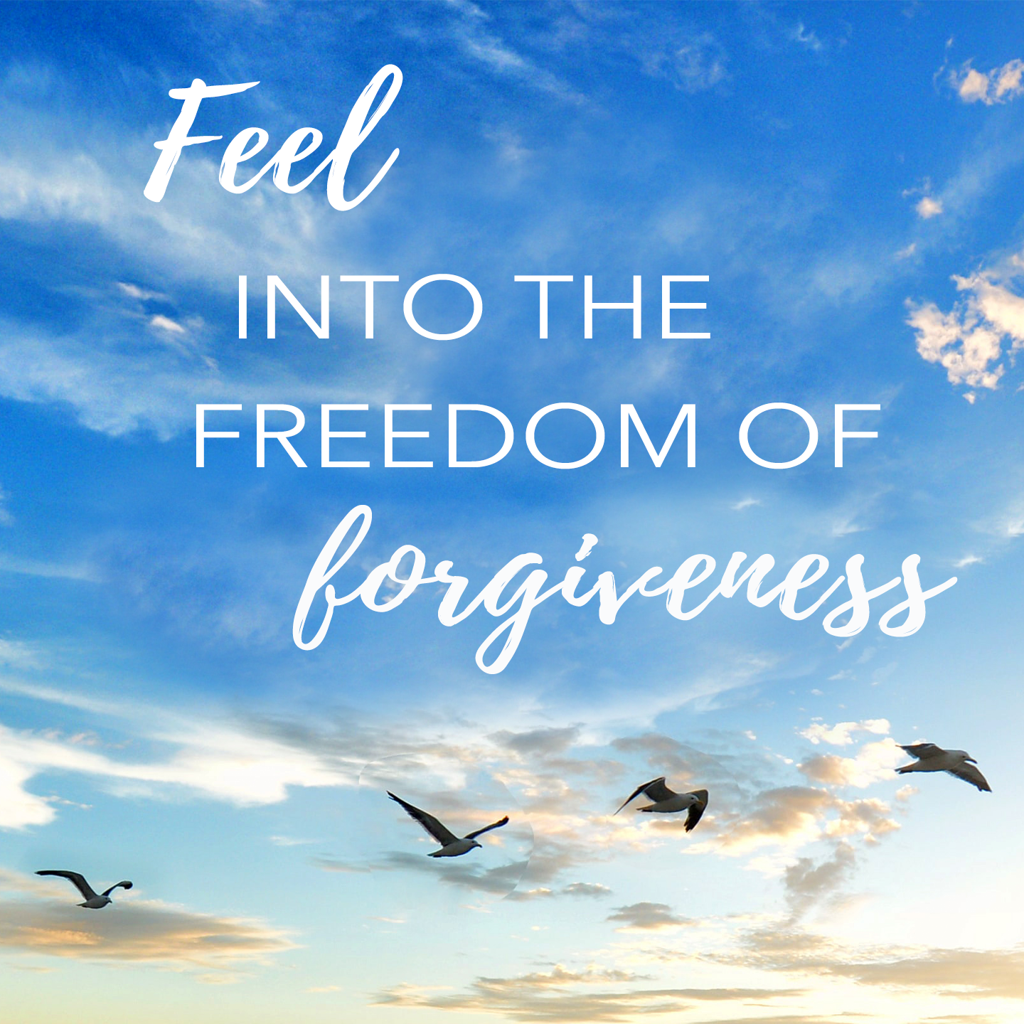 Feel into the freedom of forgiveness.