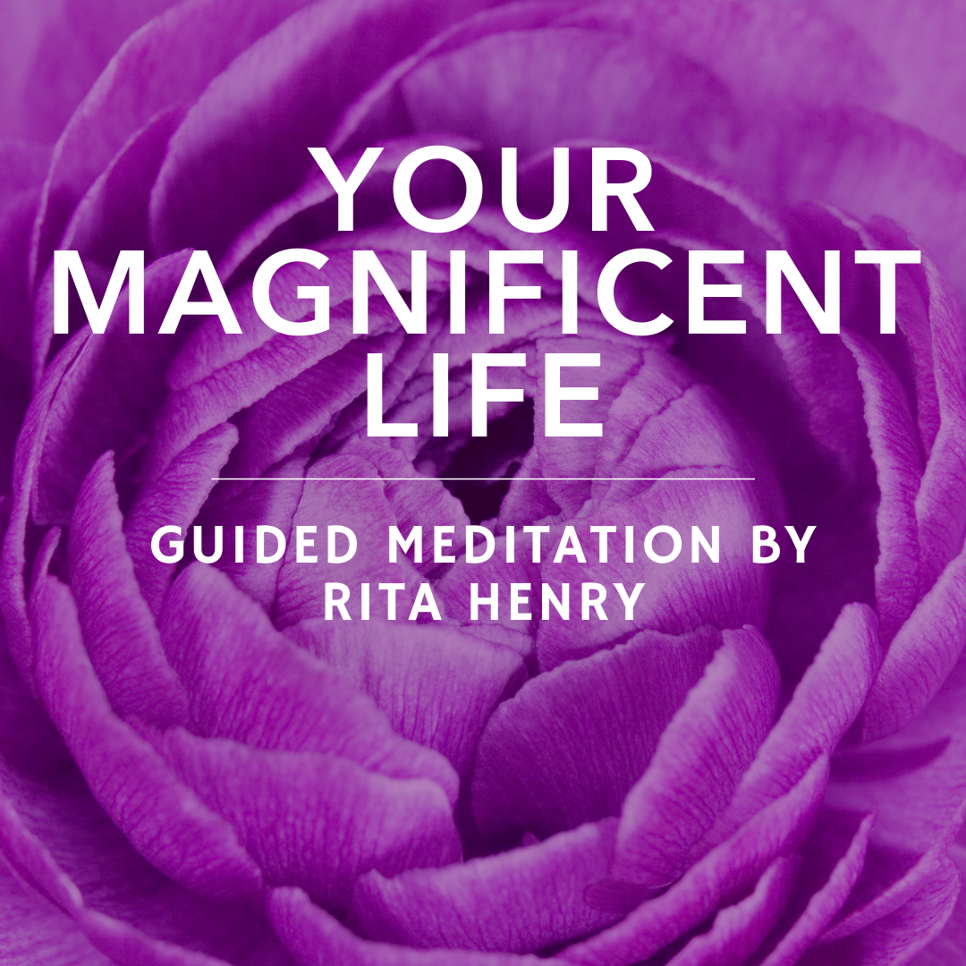 Your Magnificent Life